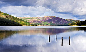 Remains of jetty in St Mary's Loch, Scottish Borders, Scotland, September 2011.  -  Merryn Thomas