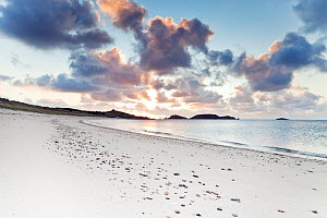 Sunrise on Par Beach, St. Martin's, Isles of Scilly, UK, October 2011. - Merryn Thomas