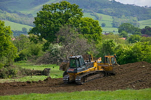 Destruction of countryside in green belt close to market town, for building of houses in flood plain, future Glasdir estate, Ruthin, Vale of Clwyd, Denbighshire, Wales, UK.  This is a highlighted area...  -  David Woodfall