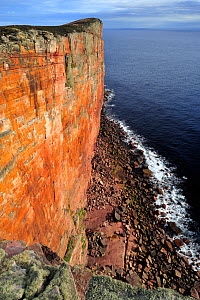 Cliff scenery at North Hoy, Hoy, Orkney, Scotland, July 2008  -  Laurie Campbell