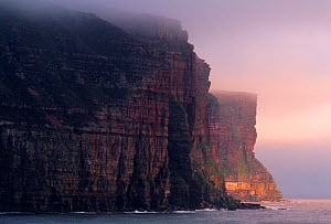 Sandstone cliffs, Rackwick Bay, Hoy, Orkney, Scotland, July 2004  -  Laurie Campbell