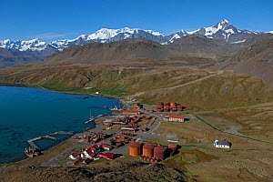 Aerial view of Grytviken Whaling Station with Museum and Church, South Georgia, March 2011  -  Ingo Arndt