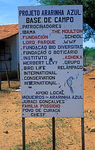 Sign for the Ararinha Azul project (Little blue macaw project) Curaca, Bahia, Brazil, for the breeding and ultimate release of captive Spix's macaw (Cyanopsitta spixii) Critically endangered species  -  Roland Seitre