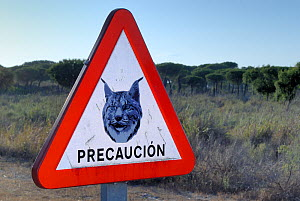 Road sign warning drivers to watch their speed in areas inhabited by the Iberian / Spanish Lynx (Lynx pardina). Sierra Morena, Andalusia, Spain, June 2006.  -  Roland Seitre