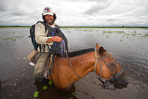 Conservation officer, Hernan Vargas Ayala, riding through wetland habitat looking out for the Critically endangered Blue throated / Wagler's macaw (Ara glaucogularis) Beni, Trinidad, Bolivia, January...  -  Roland Seitre