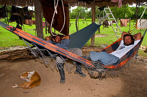 Two men relaxing on hammock in wooden hut, Trinidad, Beni, Bolivia, January 2008  -  Roland Seitre