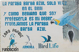 Sign of the conservation programme for the Blue throated / Wagler's macaw (Ara glaucogularis) Trinidad, Beni, Bolivia, Critically endangered species, January 2008.  -  Roland Seitre