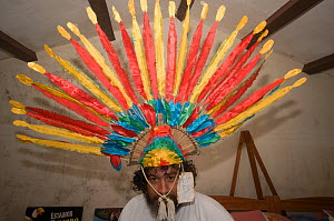 Conservation officer wearing a Macaw headress at headquarters of the Programme for the Conservation of the Blue throated / Wagler's macaw (Ara glaucogularis) Trinidad, Beni, Bolivia, Critically endang...  -  Roland Seitre