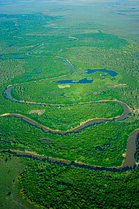 Aerial view of river, fringing forest and wetlands, natural habitat of the Blue throated / Wagler's macaw (Ara glaucogularis) Santa Ana de Yacuma, Beni, Bolivia, Critically endangered species, July 20...  -  Roland Seitre