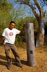 Conservationist showing front panel of artificial nests used to rear Yellow-shouldered Amazons (Amazona barbadensis) in nesting holes. Isla Margarita, Nueva Esparta, Venezuela, 2007. - Roland Seitre