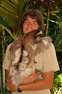 Conservation worker with tame Brown-throated Three Toed sloth (Bradypus variegatus).   Aviarios del Caribe Sloth Sanctuary, Costa Rica, 2008.  -  Roland Seitre