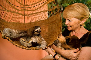 Brown-throated Three Toed Sloth (Bradypus variegatus) and Hoffmann's Two Toed Sloths (Choloepus hoffmanni) babies held byorphanage owner, Judy Avey-Arroyo. Aviarios del Caribe Sloth Refuge, Costa Rica...  -  Roland Seitre