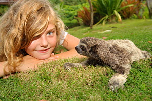 Child looking at baby Brown-throated Three Toed Sloth (Bradypus variegatus) on lawn at the sloth orphanage.   Aviarios del Caribe Sloth Refuge, Costa Rica, 2008.  -  Roland Seitre