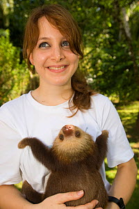 Volunteer holding Hoffman's Two Toed Sloth (Choloepus hoffmanni) Aviarios del Caribe Sloth Refuge, Costa Rica, 2008. - Roland Seitre