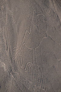 'The Hands', one of the patterns of the Nazca Lines. These are lines and patterns made around 300-600 AD by removing stones from the desert floor to expose the ground beneath. Their purpose remains un...  -  Roland Seitre