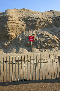 Reconstructed sand dune, reprofiled by engineering project, experiencing significant erosion by high tides and wind erosion.  Sand dune moved from Crosby to Hightown to prevent coastal innundation to... - David Woodfall