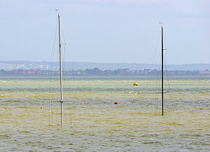 Daring keelboats sunk at their moorings following northeasterly gale in Cowes, Isle of Wight, England, April 29th 2012. - Rick Tomlinson