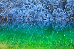 Colourful water with reflections in snow, Plitvice Lakes National Park, Lika, Croatia, Europe, January 2012 - Juan Carlos Munoz