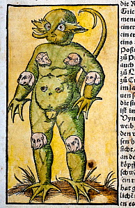 Woodcut illustration of the 'Monster of Krakow' was reported widely in the mid sixteenth century as a real occurence. It was seen by many protestants as a monstrous symptom of divine displeasure at th...  -  Paul D Stewart