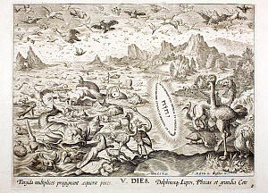 1674 Copperplate engraving depicting 'Creation of the birds, fishes and large marine life' (Genesis 1. 20-23 Day 5) under the Hebrew divine word of God. 'Let the waters bring forth abundantly the movi...  -  Paul D Stewart