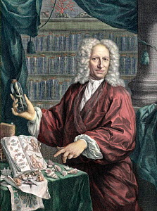 Portait of Albertus Seba, the Dutch pharmacist and collector of natural rarities, age 66 (b. May 12th 1665 - d. May 2nd 1736). Portrait with tinting, showing off rarities from his collection acquired...  -  Paul D Stewart