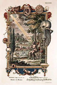 1731 Physica Sacra (Sacred Physics) by Johann Scheuchzer (1672-1733). Creation of Man from Dust (Homo ex humo) folio copper engraving with later hand colouring drawn by a team of engravers under the d...  -  Paul D Stewart