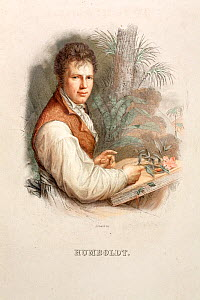 Portrait of Friedrich Alexander von Humboldt (14th September 1769 - 6th May 1859), Lizars' Steel engraving c 1830 with hand colouring after the 1806 painting by Friedrich Weitsch. A German explorer an... - Paul D Stewart