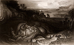 Illustration of 'The Country of the Iguanodon' by the apocalyptic artist John Martin, commissioned by Gideon Mantell as the frontis for his popular book 'The Wonders of Geology' (1838). Martin was vis...  -  Paul D Stewart