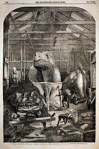 The Illustrated London News, December 31st, 1853, page 600. 'The Extinct Animals Model-Room, at the Crystal Palace, Sydenham' by P.H. Delamotte. Benjamin Waterhouse Hawkins made the first full size re...  -  Paul D Stewart