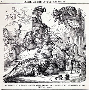 Illustration of 'The effects of a hearty dinner after visiting the Antediluvian Department at the Crystal Palace' from Punch, Volume 28, 1855. The restorations of dinosaurs at the Crystal Palace in Sy...  -  Paul D Stewart