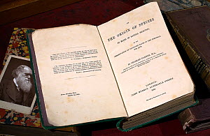 Copy of the first edition 'On the Origin of Species' by Charles Darwin (1859) together with a Cabinet photograph of Darwin and some other Darwin related books. 'The Origin' was first published on Thur...  -  Paul D Stewart