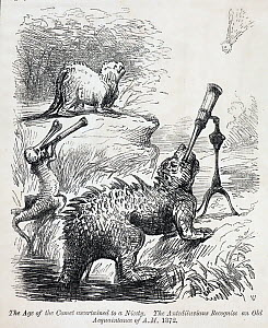 Illustration from Punch 41 (1861) page 34, July. 'The age of the comet ascertained to a nicety. The antediluvians recognise an old acquantance of A.M. 1372'. Prehistoric reptiles (modelled after Water...  -  Paul D Stewart
