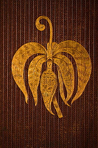 A swan orchid 'Cycnoches' in gilt on the front cover of the first edition (plum, ribbed) of 'On the Various Contrivances by which Orchids are fertilised by Insects and the good effects of intercrossin...  -  Paul D Stewart
