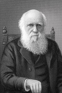 High resolution steel engraving portrait of Charles Darwin by C.Cook, printed by William Mackenzie, the Scottish printer and publisher in 1899. It appears in James Taylor's 'The Victorian Empire' and...  -  Paul D Stewart