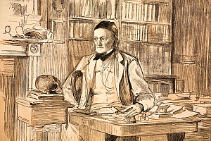 Portrait of Richard Owen (20, July 1804- 18 December 1892); 1883 portrait in his home study for The Graphic magazine, in the year he retired from the BMNH. Owen was a comparative anatomist and palaeon...  -  Paul D Stewart