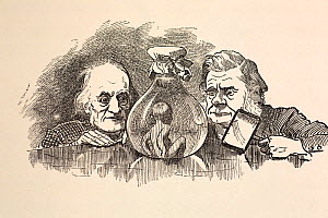 Illustrated portraits of Richard Owen (20, July 1804- 18 December 1892) and Thomas Henry Huxley (4 May 1825 - 29 June 1895). Linley Sambourne's illustration for the new 1885 Macmillan edition of Kings... - Paul D Stewart