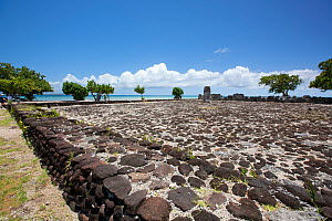 Marae Taputapuatea is a large marae complex at Opoa in Taputapuatea, on the south eastern coast of Raiatea. The site features a number of marae and other stone structures and was once considered the c... - Sue Flood