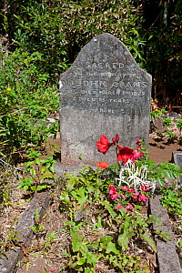 Grave of John Adams, Pitcairn Island, Pitcairn Islands, South Pacific 2010  -  Sue Flood