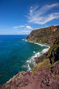 View along coastline, Pitcairn Island, Pitcairn Islands, South Pacific 2010  -  Sue Flood