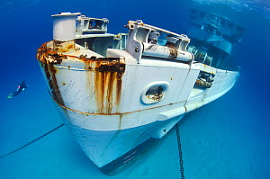 Diver approaching the wreck of the bow of the USS Kittiwake (US Military submarine rescue vessel) Photograph was taken shortly after the wreck was deliberately sunk as an attraction for scuba divers,...  -  Alex Mustard