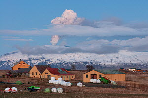 Farm with plume from the Eyjafjallajokull volcano rising in the distance, Iceland, April 2010  -  Orsolya Haarberg