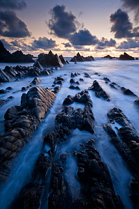 Hartland Quay, rugged north Devon coastline, high tide at sunset, Devon, UK, April 2012.  -  Ross Hoddinott