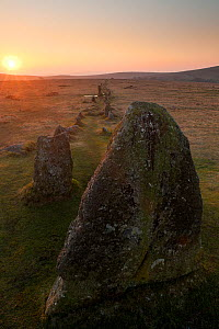Merrivale ancient Stone Row at sunset, Dartmoor National Park, Devon, UK, March 2012.  -  Ross Hoddinott