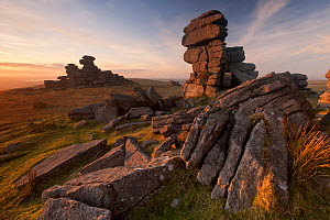Great Staple Tor in late evening light, Dartmoor National Park, Devon, England, UK. January. 2020VISION Book Plate.  -  Ross Hoddinott / 2020VISION