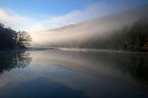 Early morning mist over the River Dart, Sharpham, Devon, UK, March 2012  -  Rob Cousins