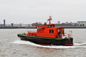 Liverpool Pilot Boat 'Petrel' on the River Mersey, England, March 2012. All non-editorial uses must be cleared individually. - Graham Brazendale