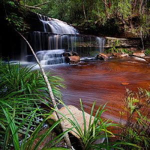 Gulik Falls, edge of southern plateau, Maliau Basin, Sabah's 'Lost World', Borneo (digitally stitched image)  -  Nick Garbutt
