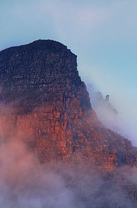 The rugged cliffs of Stac Pollidh in cloud and mist and lit by evening light. Cairngorms National Park, Scotland, July.  -  Fergus Gill / 2020VISION