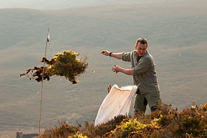 Clearing undergrowth before native tree planting at Abernethy Forest, Cairngorms National Park, Scotland, March 2012. - Peter Cairns / 2020VISION