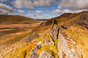 View from rocky outcrop into Pumlumon Fawr. Cambrian Mountains, Wales, May 2012.  -  Peter Cairns / 2020VISION